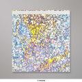 165x165 mm Zilverkleurige, holografische folie-enveloppen