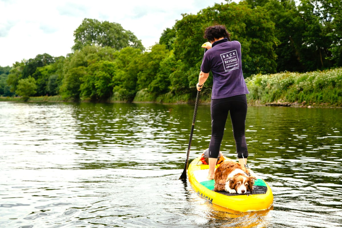 Back of Beyond SUP with PUP Richmond.jpg