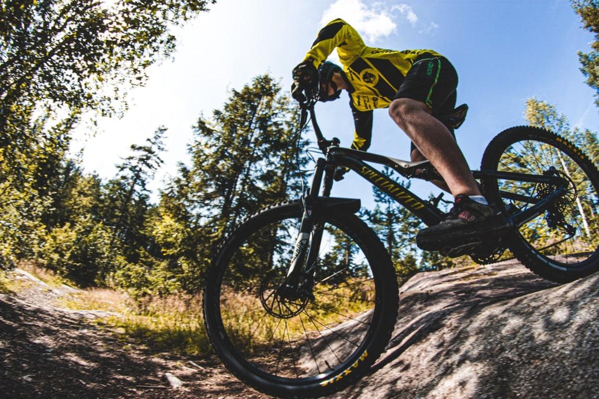 Book mountain biking
