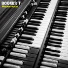 Booker T. Jones - Warped Sister