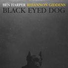 Ben Harper - Black Eyed Dog