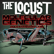 The Locust - Molecular Genetics From The Gold Standard Labs