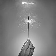 Delicate Steve - Hallelujah