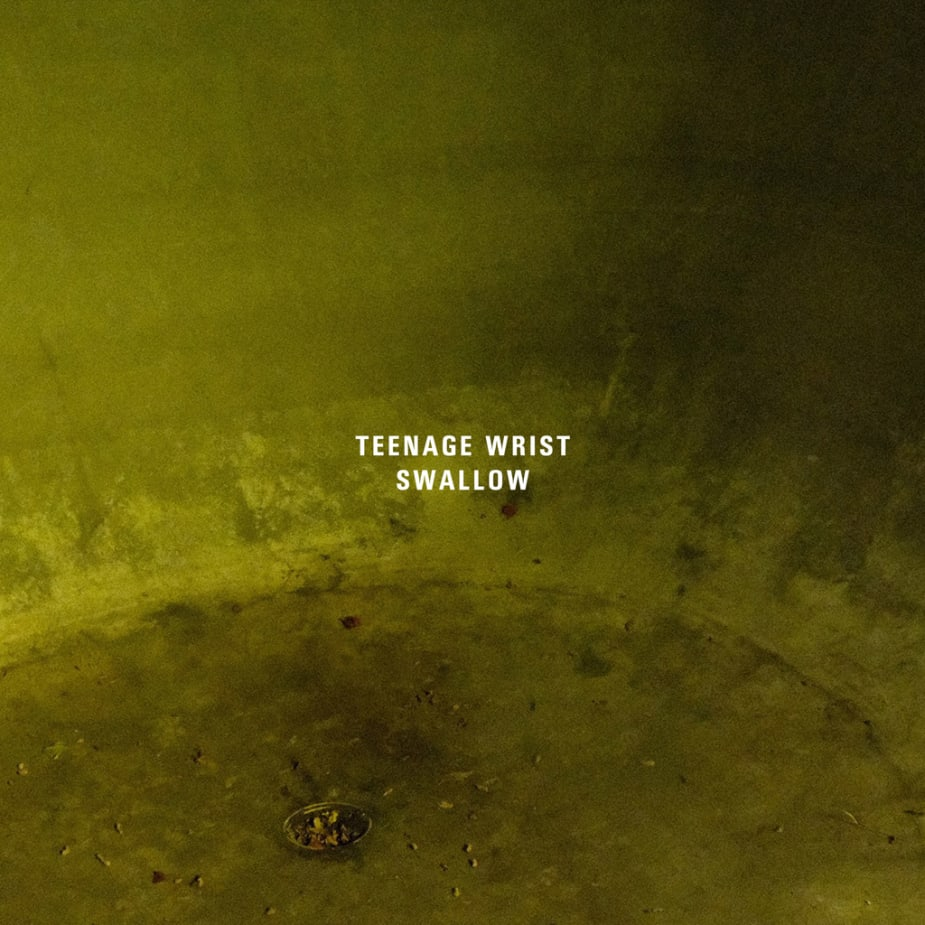 Teenage Wrist - Swallow (Single)