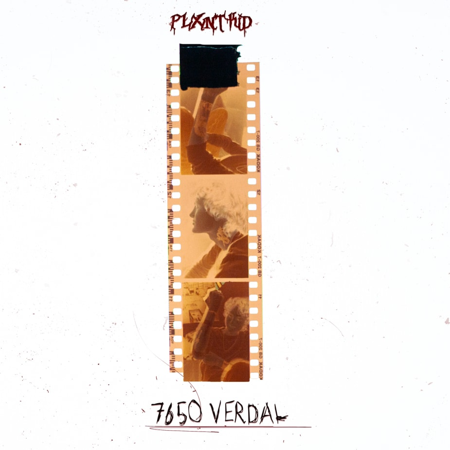 plxntkid - 7650 VERDAL