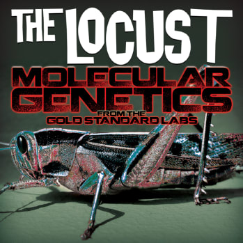 THE LOCUST MOLECULAR GENETICS FROM THE GOLD STANDARD LABS OUT JULY 31 VIA ANTI- RECORDS