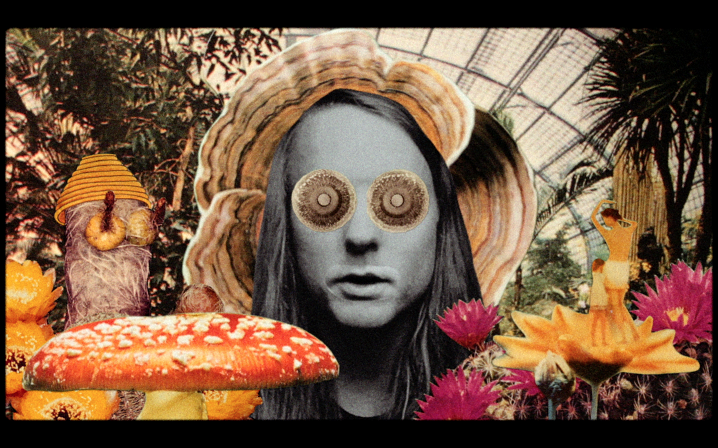 Andy Shauf Debuts Video Via Stereogum