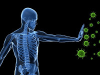 Cameron Groome of Avivagen (VIV.V): Enhancing our Own Immune System