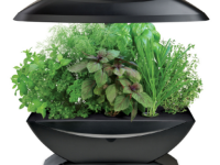 Aerogrow Makes it Possible For Everyone to Grow Fresh Veggies Faster and Without the Fuss