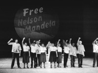 The Economic Legacy of Nelson Mandela in Perspective
