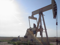 Oil Down in 7 of 8 Sessions to Lowest Close in Seven Months