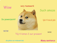 The Central Authority of Dogecoin