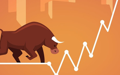 Outlook 2020: Will Bulls Forge Ahead?
