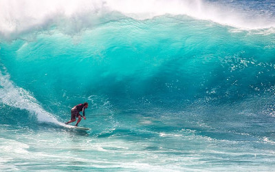​Why Investors Should Think Like a Surfer
