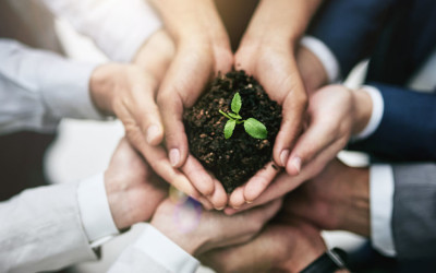 ​A Startup's Triple Bottom Line to Social Responsibility