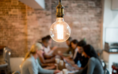 How Many Entrepreneurs Does It Take to Change a Light Bulb?