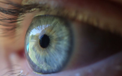 ​EyeGate's Potential is in Making a Trusted Substance Even Better