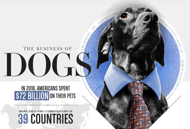 The Big Business Of Dogs
