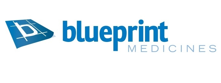 Ipo report blueprint medicines bpmc equities malvernweather Image collections