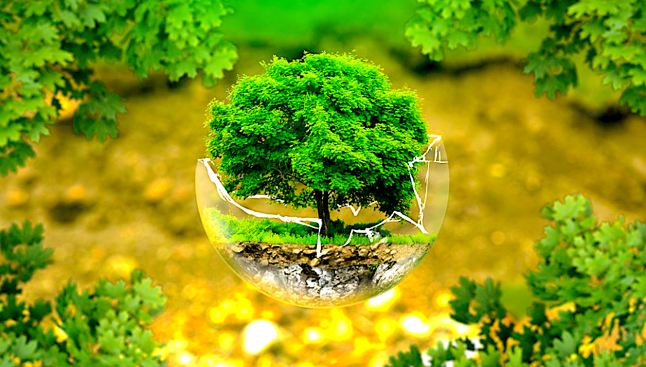 5 Ways Small Business Can Increase Revenue Through Sustainable Solutions