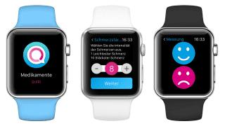 UI auf der Apple Watch für Quiri