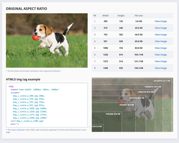 Screenshot of the tool's outputs