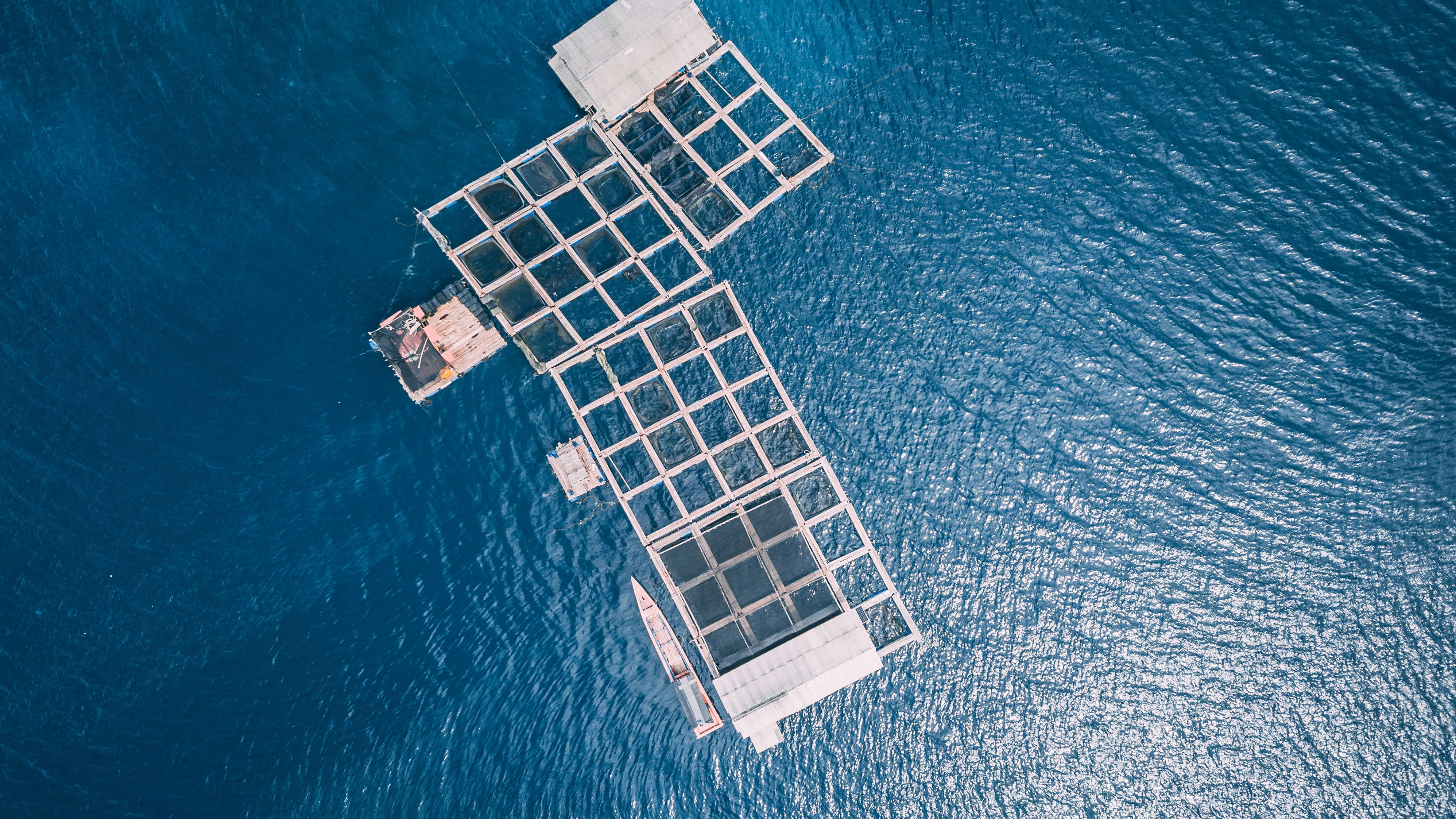AQUAEXCEL3.0 project launched to further boost European aquaculture