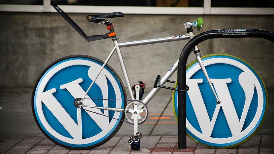 WordPress Voor Dummie's Review & Ervaringen