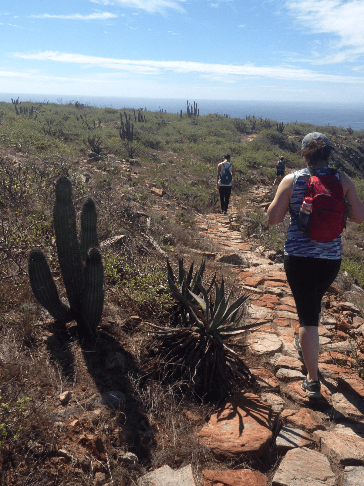 Baja Beach Boot Camp Todos Santos, Mexico February 15th  - 21st, 2020