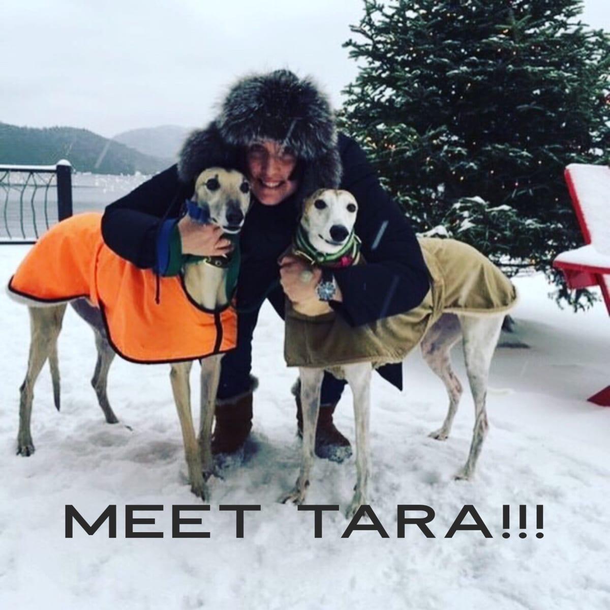 MEET TARA!