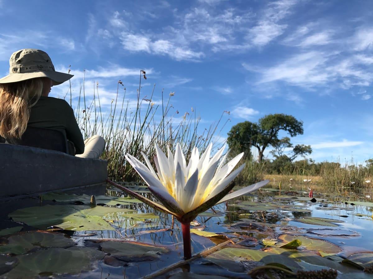 Escape To Shape Botswana