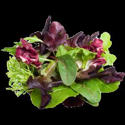 Mezclum de lechuga y hojas verdes