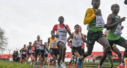 Maratona jpg ok opt