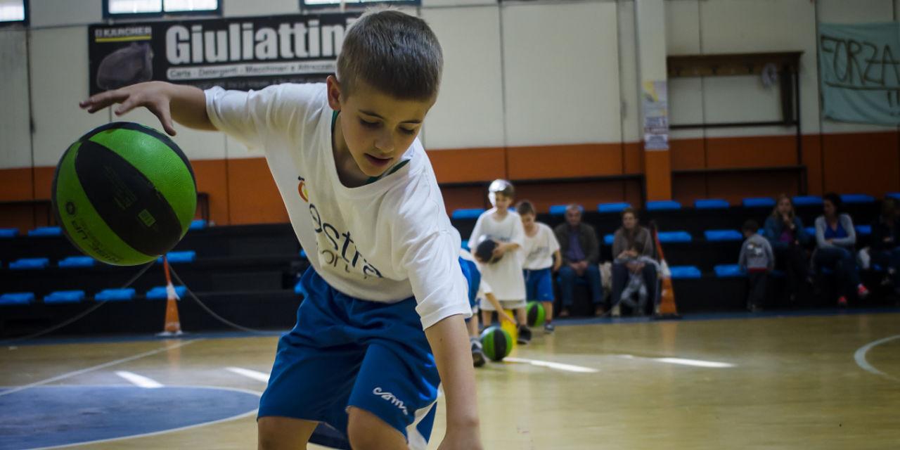 Basket arezzo 07