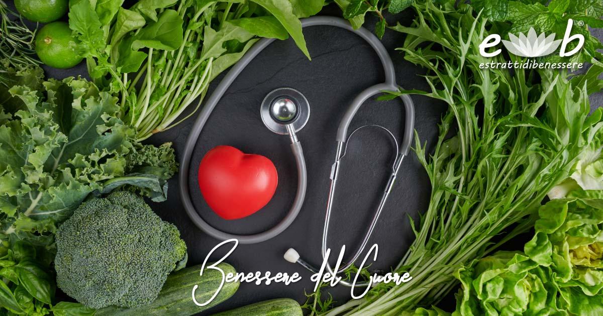 benessere del cuore e dell apparato cardiovascolare