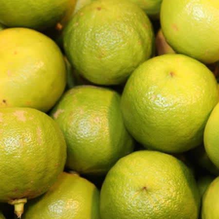 bergamotto frutto antiossidante vitamine c e b polifenoli italiano succo
