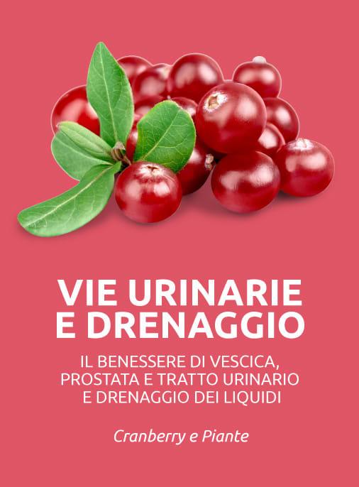 benessere delle vie urinarie vescica e prostata drenaggio dei liquidi in eccesso