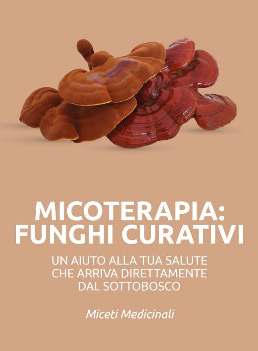 micoterapia funghi curativi medicinali