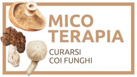 micoterapia cura coi funghi curativi integratori alimentari miceti fungo alimentare
