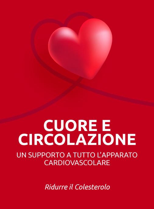 benessere del cuore e dell'apparato circolatorio supporto cardiovascolare ridurre colesterolo