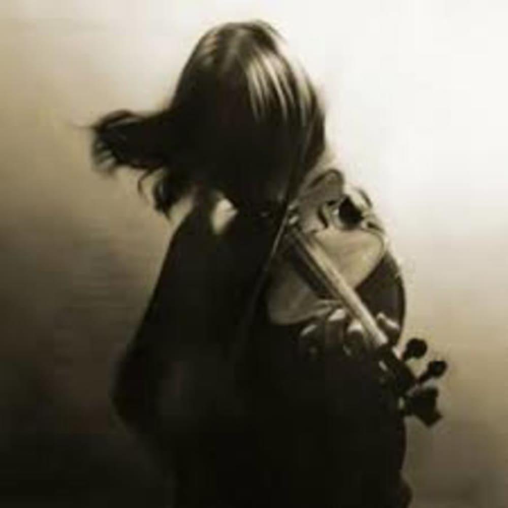 Un violon dans les bois