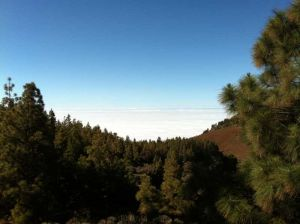 sea of clouds tenerife