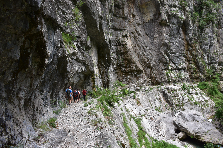 Bojana local guide