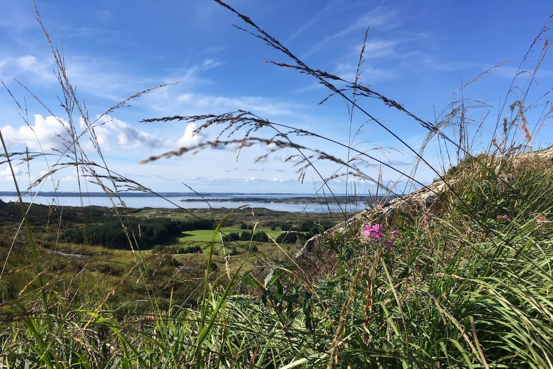 Naturen på Vestlandet