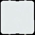 BLINDPLATE FOR RAMMER SCALA