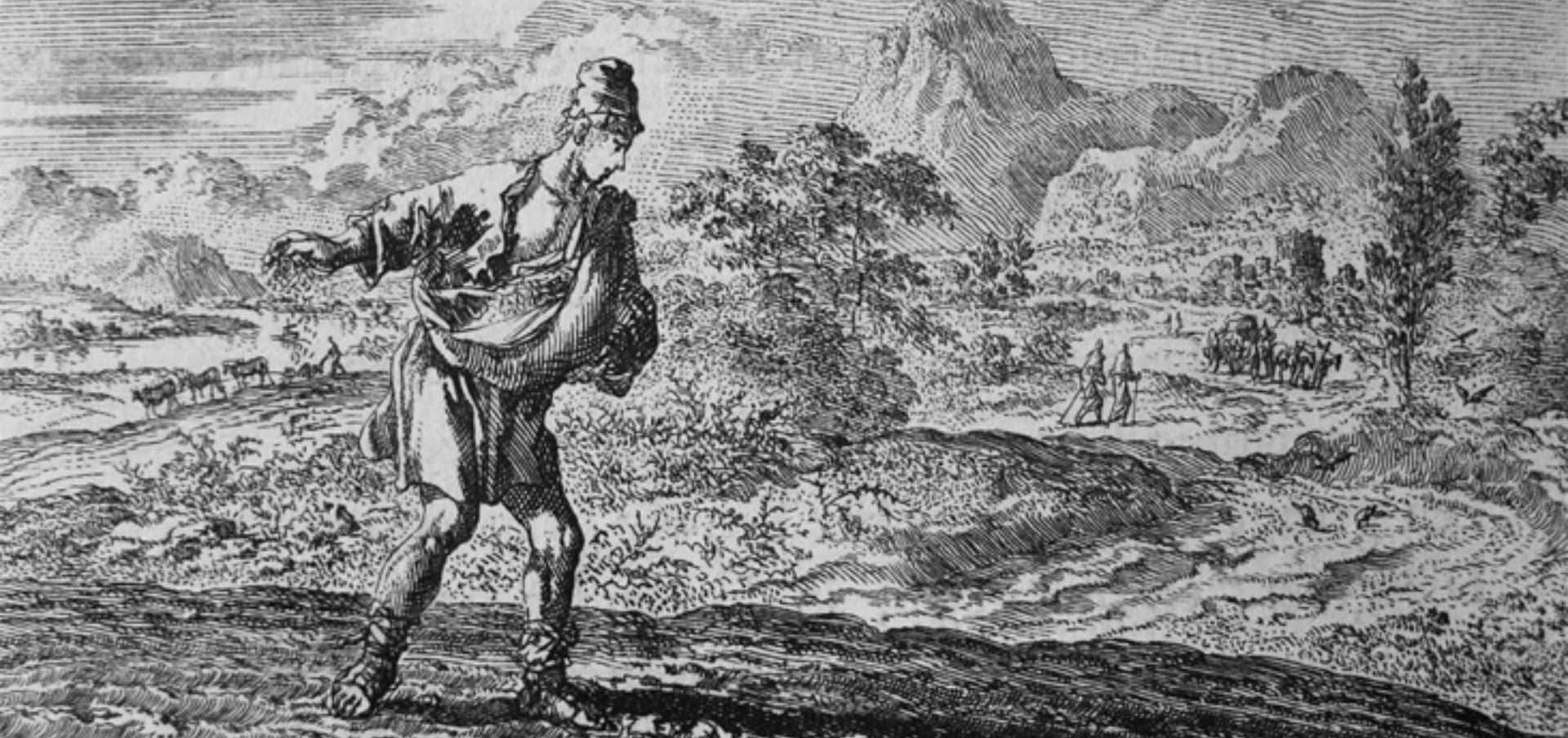 O Semeador - Série: As Parábolas de Jesus