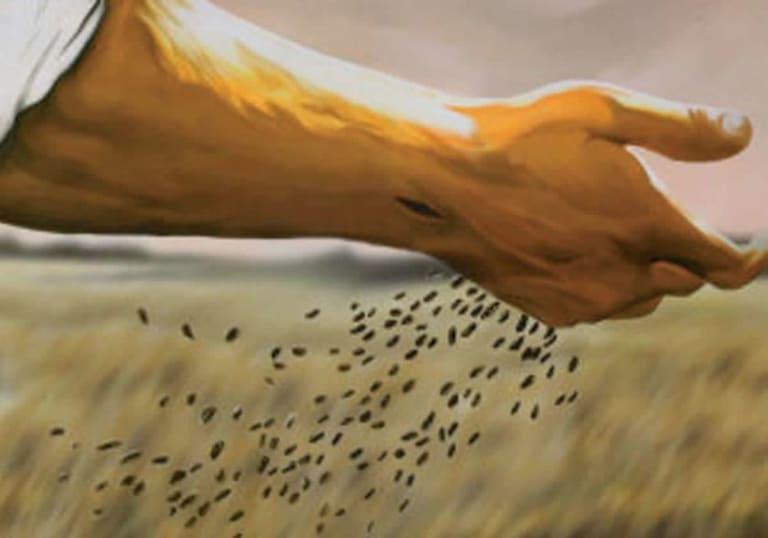 Gesù seminatore