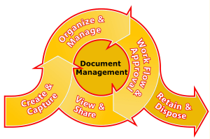 Document Management Life Cycle
