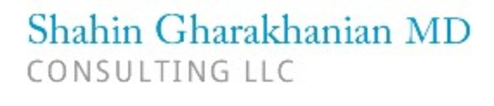 Shahin Gharakhanian Consulting LLC