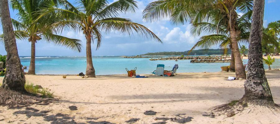 Impression von Pointe-à-Pitre (Guadeloupe)